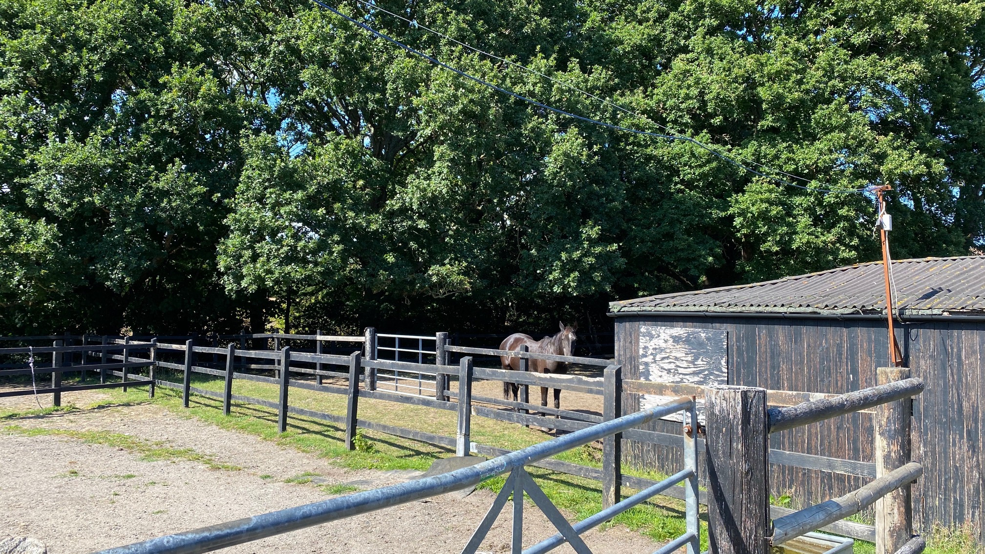 Horse Bed & Breakfast at Studland Stables